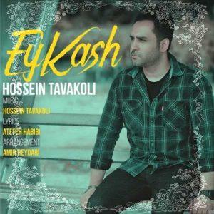 آهنگ جدید حسین توکلی بنام ای کاش + پخش آنلاین