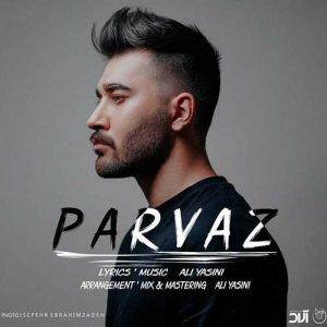 آهنگ جدید علی یاسینی بنام پرواز + پخش آنلاین