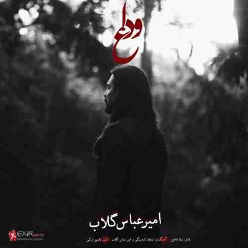 آهنگ جدید امیر عباس گلاب بنام وداع + پخش آنلاین