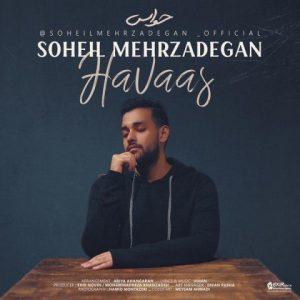 آهنگ جدید سهیل مهرزادگان بنام حواس + پخش آنلاین