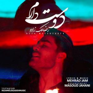 آهنگ جدید رضا ملک زاده بنام دوست دارم + پخش آنلاین