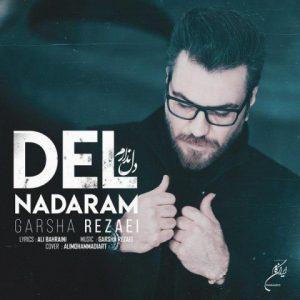 آهنگ جدید گرشا رضایی بنام دل ندارم + پخش آنلاین