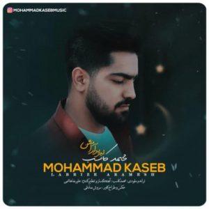 آهنگ جدید محمد کاسب بنام لبریز آرامش + پخش آنلاین